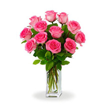 Dozen Pink Roses: Birthday Flower Delivery in Australia
