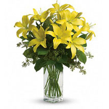 Yellow Blossom: Send Anniversary Flowers to Australia