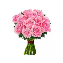 12 pink roses: Send Birthday Gifts to Edmonton
