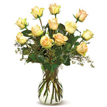 A Dozen Cream Roses-CND: Thank You Flowers Canada