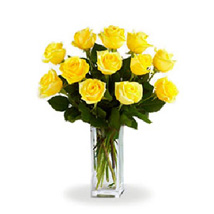 Yellow Roses: Gifts to Canada for Sister