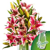 10 pink Stargazer Lilies in a bunch: New Year Gifts Germany