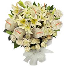 White Frost HK: Best Flower Delivery in Hong Kong
