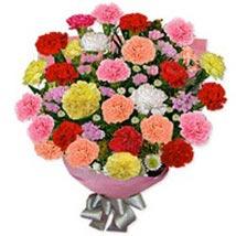 Carnation Carnival NELD: Gifts to Netherlands