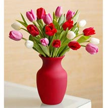 Assorted Tulips: Wedding Gifts to Philippines