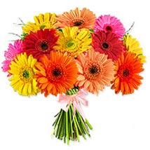 Crazy Daisy SUAR: Flower Delivery in Saudi Arabia