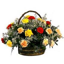Rainbow Carnation Basket SA: Bhai Dooj Gifts South Africa