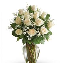 12 White Roses Arrangement: Sympathy & Funeral Flowers UAE