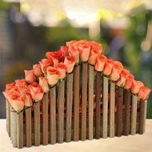 Cascade of Roses: