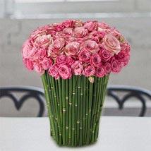Plushy Pink: