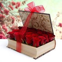 Serenade Beauty: