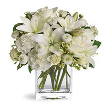 White Beauty: Sympathy & Funeral Flowers UAE