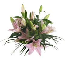 Lush Lillies in Pink: Wedding