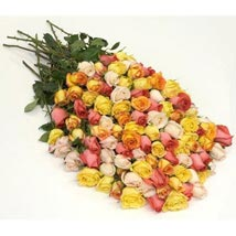 100 Long Stem Assorted Roses: Same Day Flower Delivery in Cary