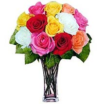 12 Long Stem Assorted Roses: Valentine Day Gifts Boston
