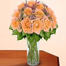 12 Long Stem Peach Roses: Valentine Gifts Los Angeles