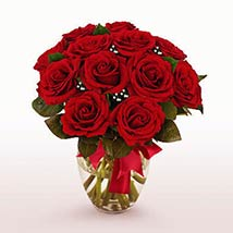 12 Long Stem Red Roses: Valentine Day Gifts Boston