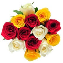 12 Mix Color Roses: Send Flowers to Cary