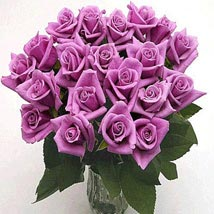 25 Long Stem Lavender Roses: Flowers to San Diego