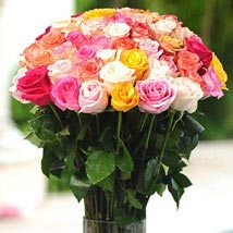 36 Multicolor roses in Vase: Send Flowers to Chicago