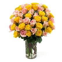 50 Long Stem Assorted Roses: Send Flowers to Cary