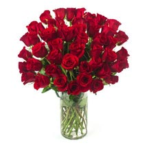 50 Long Stem Red Roses: Flowers to Houston