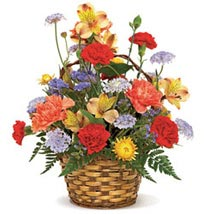 Carnival of Color: Friendship Day Flowers to USA