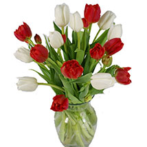Christmas Mixed Tulips: Friendship Day Flowers USA