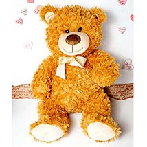 Cute Brown Teddy Bear: Send Valentine Day Gifts to Boston
