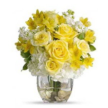 Elegant N Bright: Same Day Flowers to Columbus