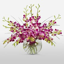 Purple Orchids in Vase: Send Flowers to Cary