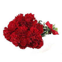 Red Carnations: Send Flowers to San Diego