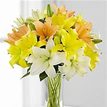 Simple Asiatic Lilies: Valentine Day Gifts Boston
